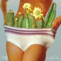 white-denim-stiff-new-album