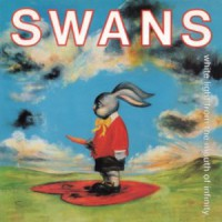 swans white